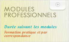 modules professionnels